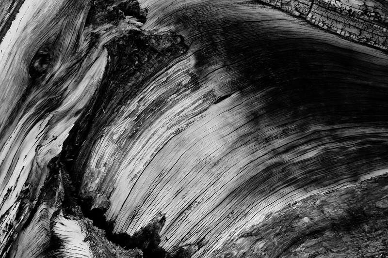 Yosemite 2005-033