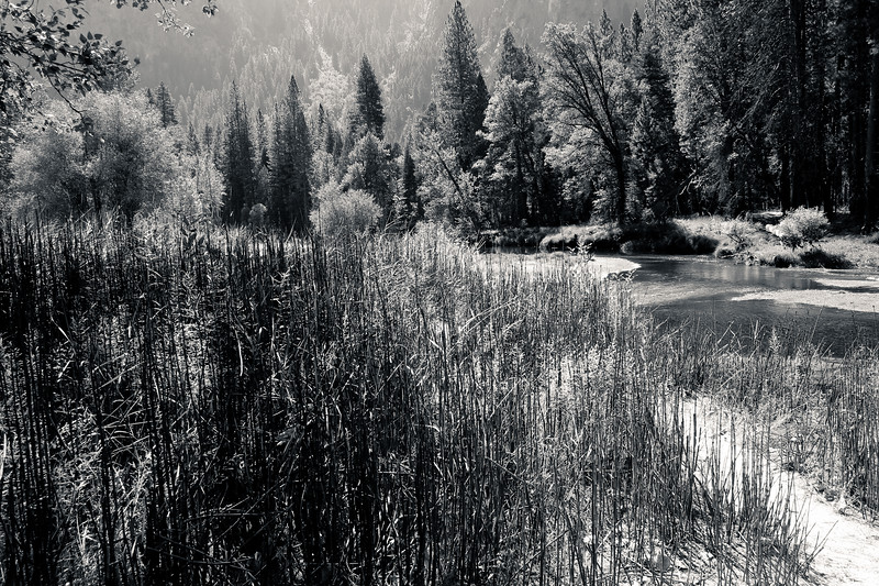 Yosemite 2005-057-2