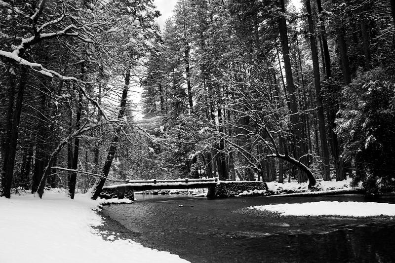 Yosemite 2006-148
