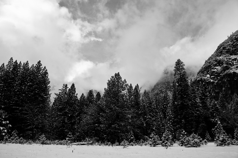 Yosemite 2006-130