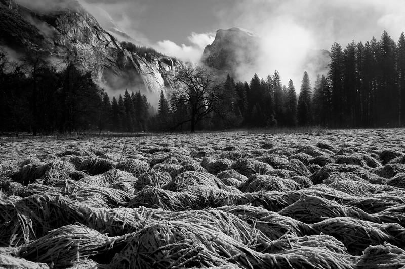 Yosemite 2007-136