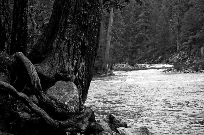 Yosemite 2007-110