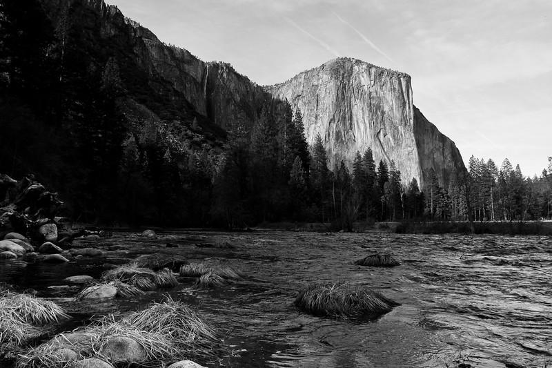 YosemiteApril2009-233