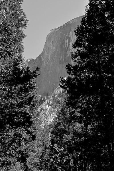 YosemiteApril2009-043
