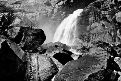 YosemiteApril2009-389