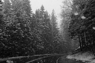 YosemiteApril2009-417