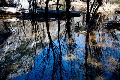 YosemiteApril2009-049