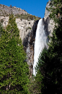 YosemiteApril2009-069