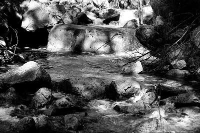 YosemiteApril2009-037