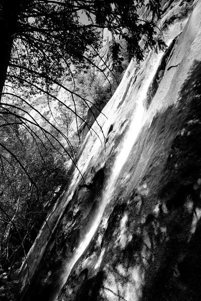 YosemiteApril2009-162