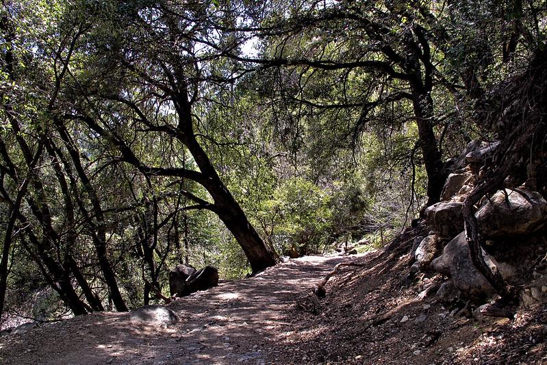 YosemiteApril2009-315