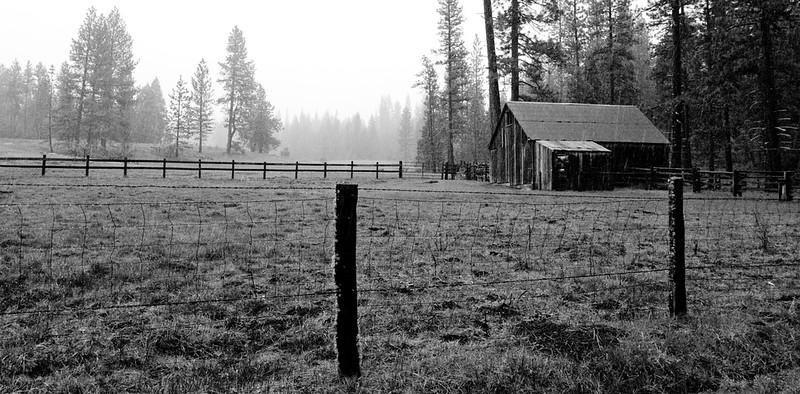 YosemiteApril2009-416