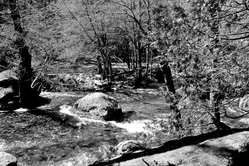 YosemiteApril2009-059