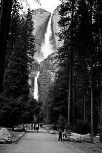 YosemiteApril2009-026