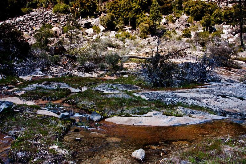 YosemiteApril2009-340