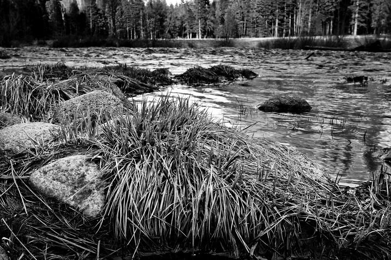 YosemiteApril2009-256