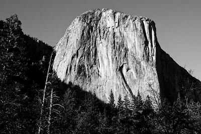 YosemiteApril2009-013