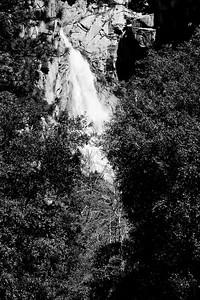 YosemiteApril2009-038