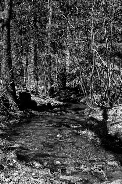 YosemiteApril2009-183