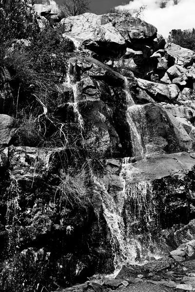 YosemiteApril2009-323