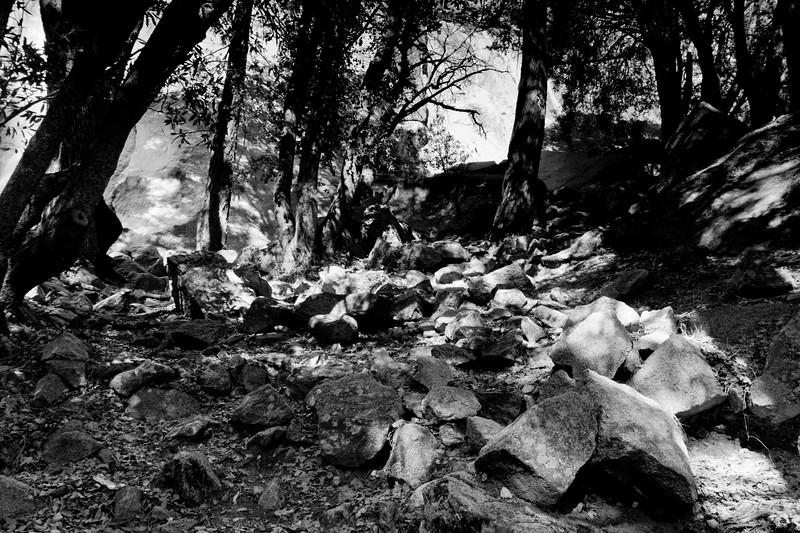 YosemiteApril2009-181