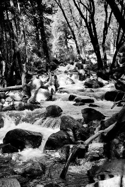 YosemiteApril2009-072