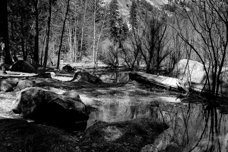 YosemiteApril2009-051