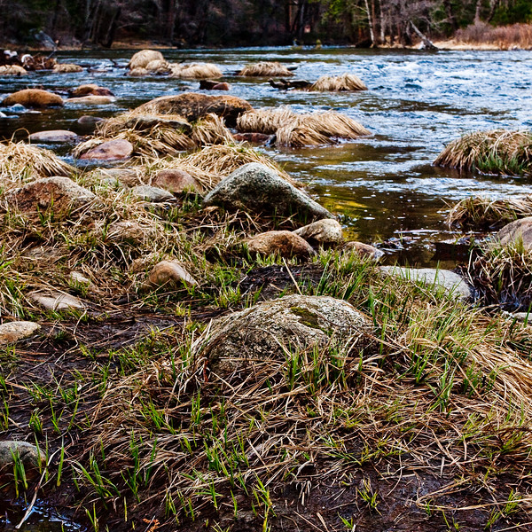 YosemiteApril2009-255