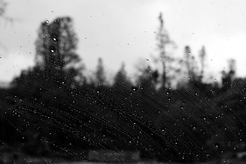 YosemiteApril2009-414