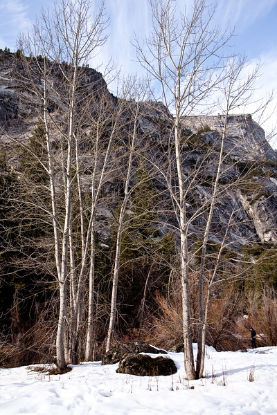 Yosemite2010Feb-344