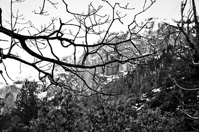 Yosemite2010Feb(A)-007