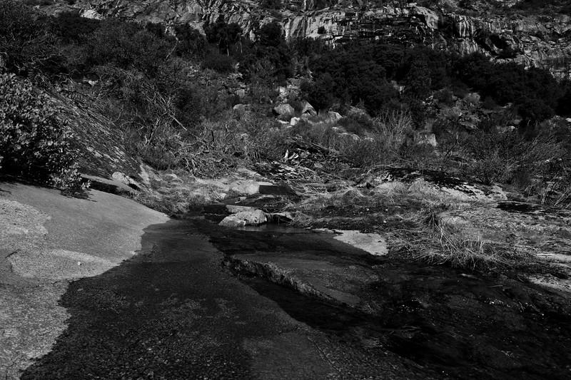 Yosemite2010Feb(A)-062