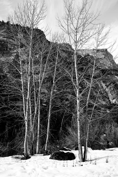 Yosemite2010Feb(A)-343