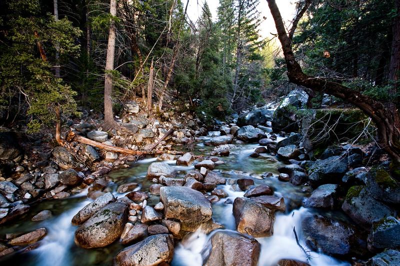 Yosemite2010Feb-404