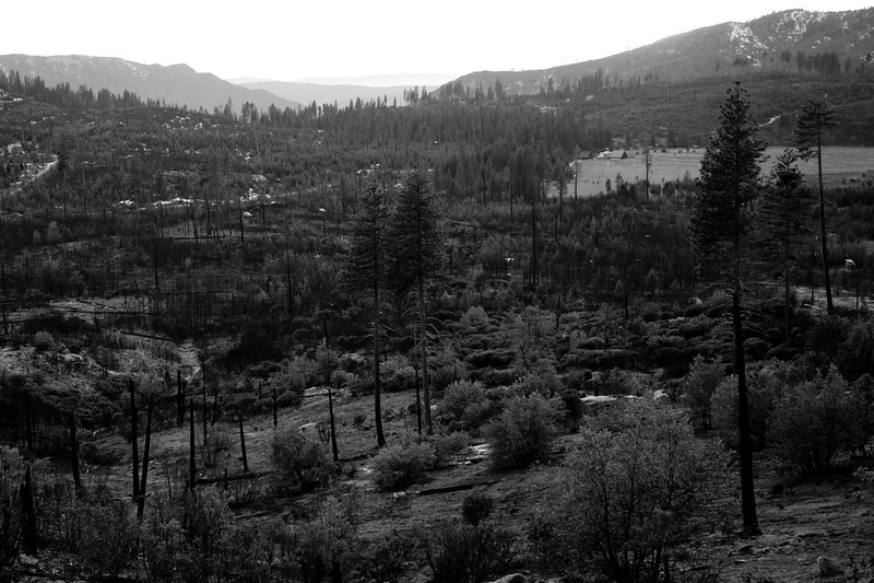 Yosemite2010Feb(A)-218