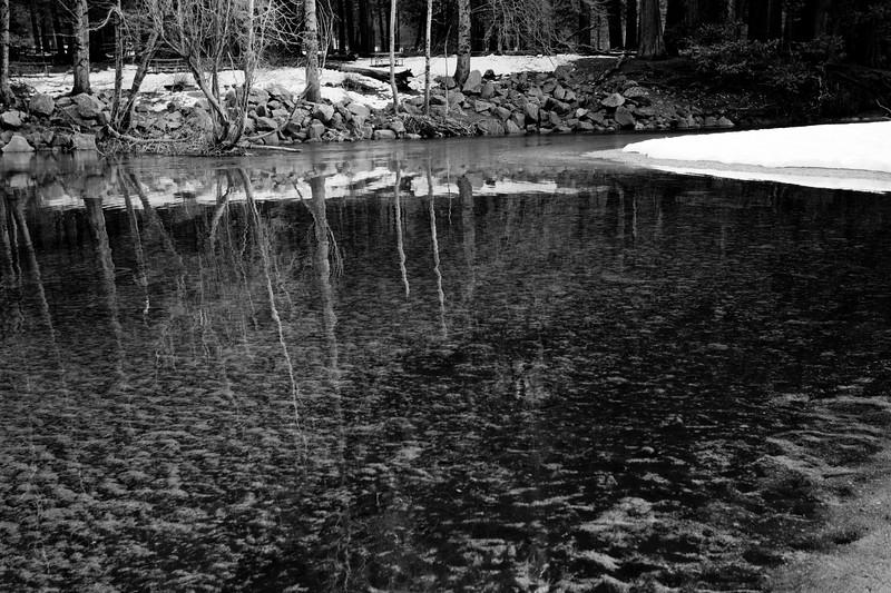 Yosemite2010Feb(A)-036