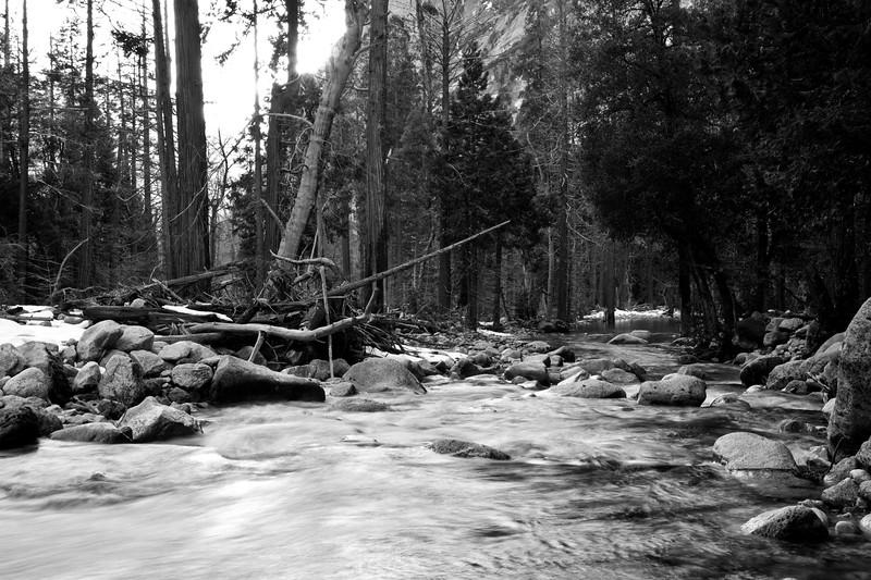 Yosemite2010Feb(A)-391