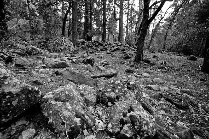 Yosemite2010Feb(A)-017