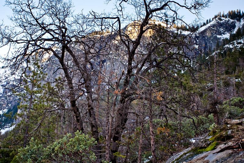 Yosemite2010Feb-006