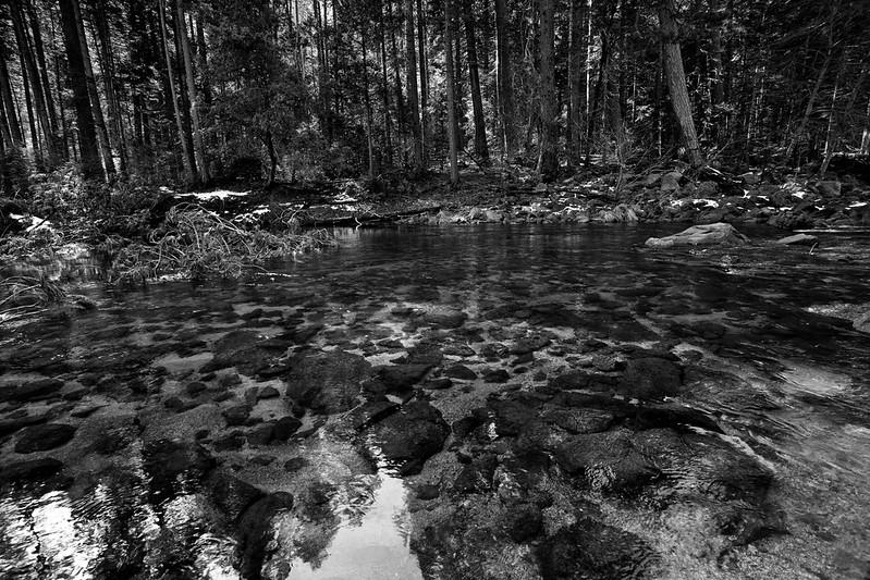 Yosemite2010Feb(A)-224