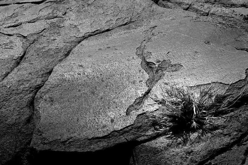 Yosemite2010Feb(A)-068
