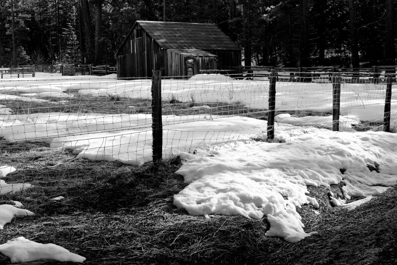 Yosemite2010Feb(A)-046