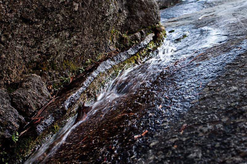 Yosemite2010Feb-010