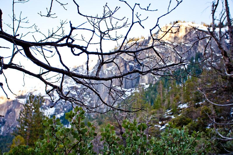 Yosemite2010Feb-008