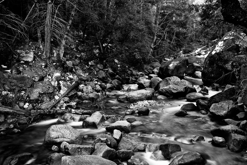 Yosemite2010Feb(A)-401