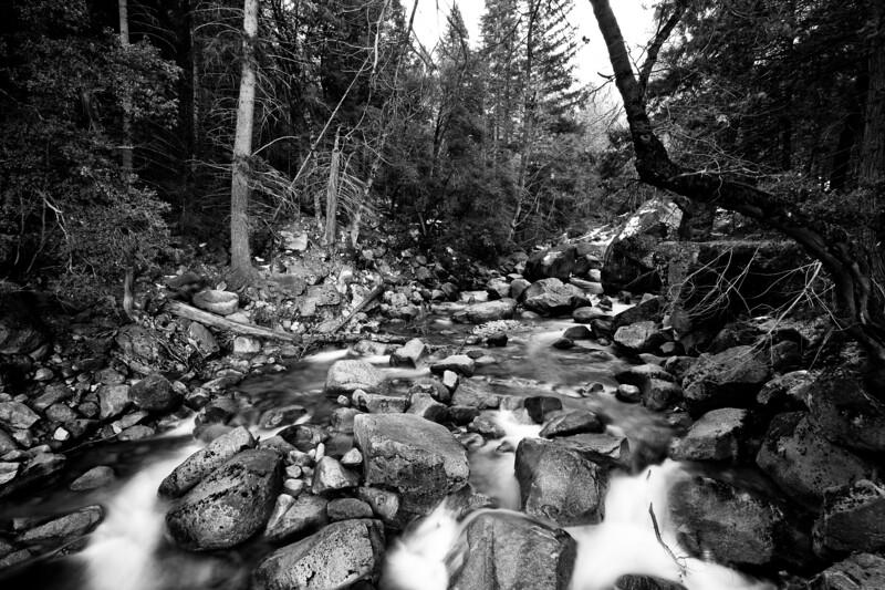 Yosemite2010Feb(A)-403