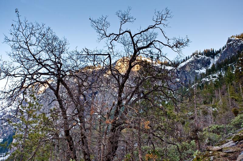 Yosemite2010Feb-004