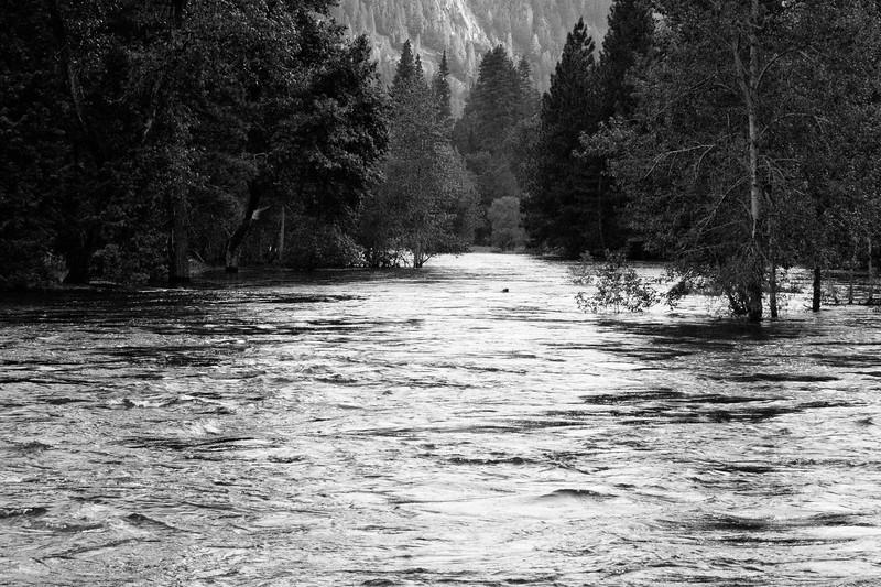 Yosemite2011June-179