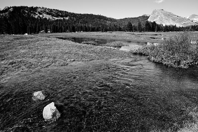 Yosemite2011June-087