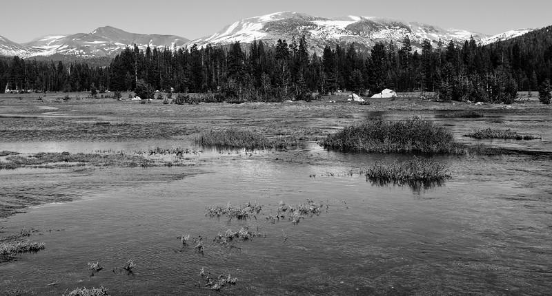 Yosemite2011June-086